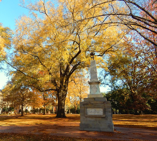 Maxcy Monument and willow oak
