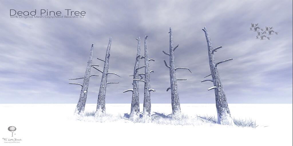 The Little Branch - Dead Pine Tree {Winter} - Wanderlust Weekend