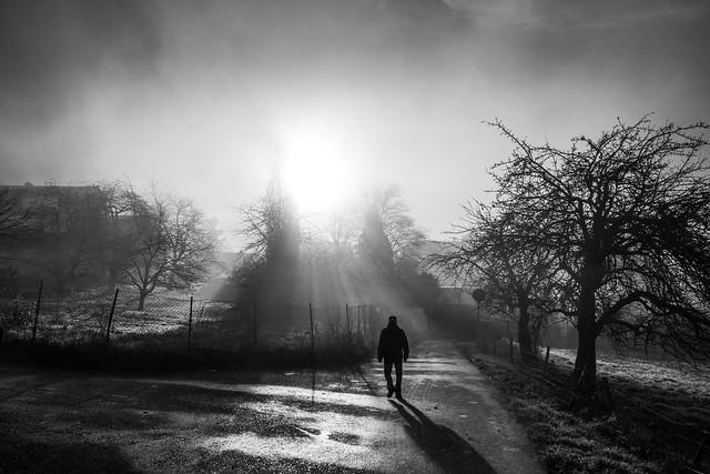 The glory of the morningmist
