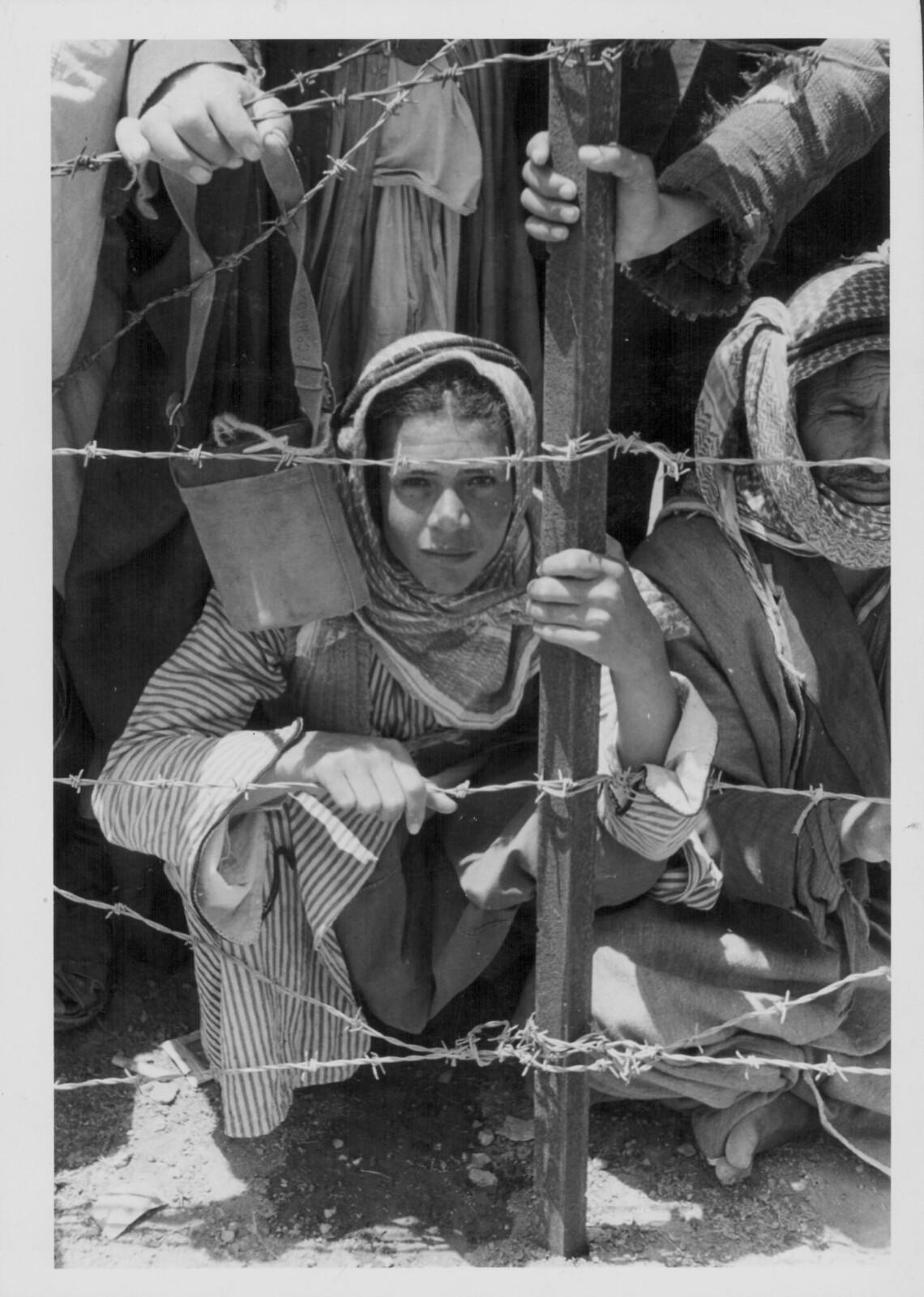 07. Арабские заключенные за колючей проволокой в концлагере для мятежников, расположенном в Дженине