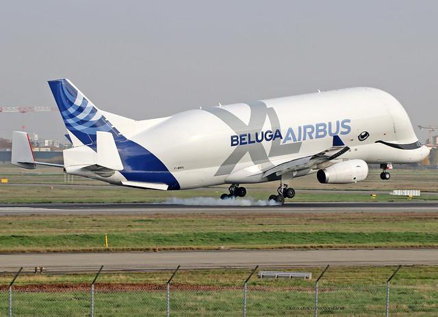 BelugaXL_Airbus_F-WBXL-003_cn1824