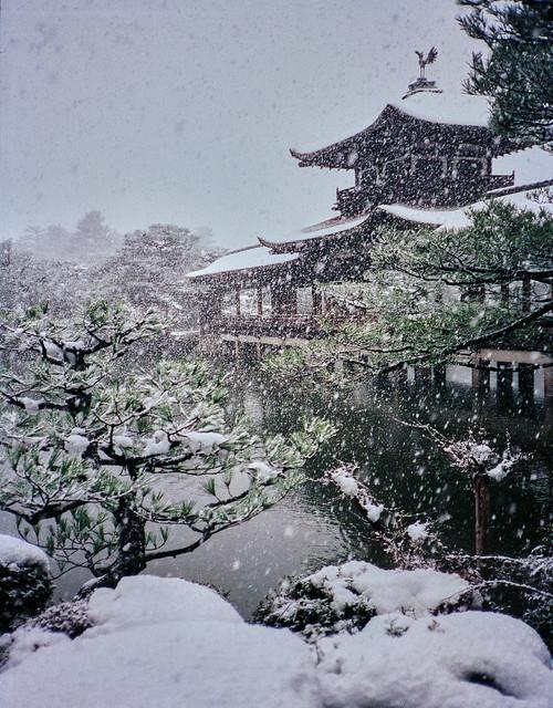 Snowstorm at Heian jingu (平安神宮)