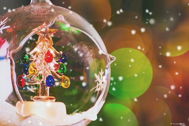 CHRISTMAS IS HERE!!!! - MACRO MONDAYS