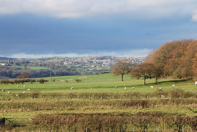 Farmland and hills