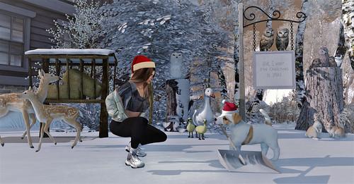 Winter Helper - TLC Group Gift