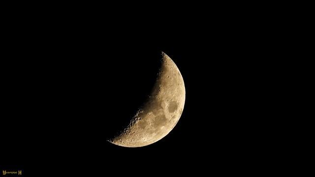 Croissant de Lune - 9205