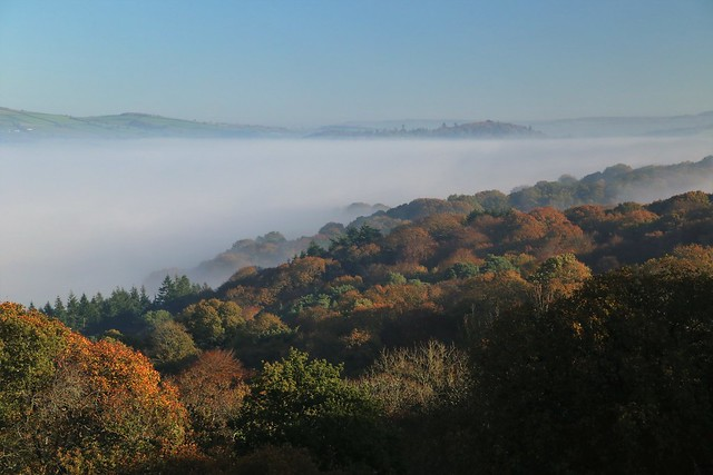 Exe and Culm valley fog