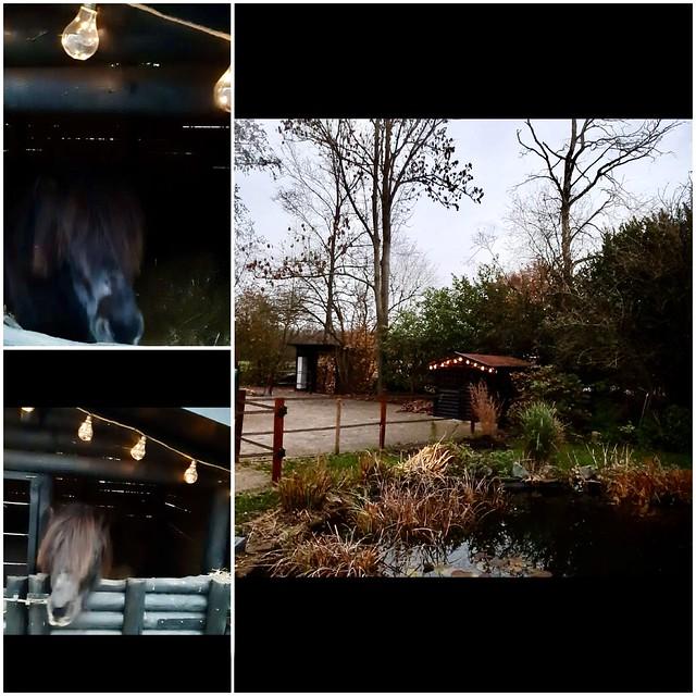 Paardenstal kerstversiering buiten