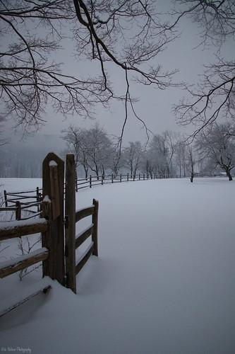 snow winter winterscape landscape fence white farm trees rural wood