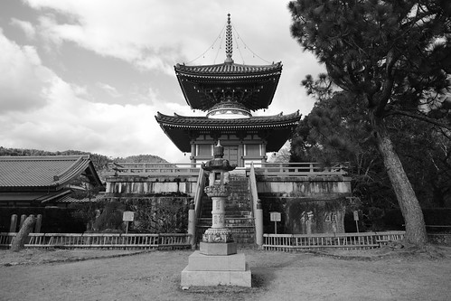 21-12-2020 (5th)(visiting 7Daikaku-ji Temple' from Arashiyama) (17)