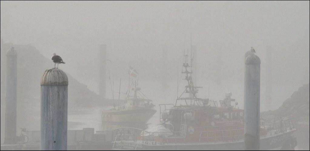 Garder les distances et rester dans le brouillard...