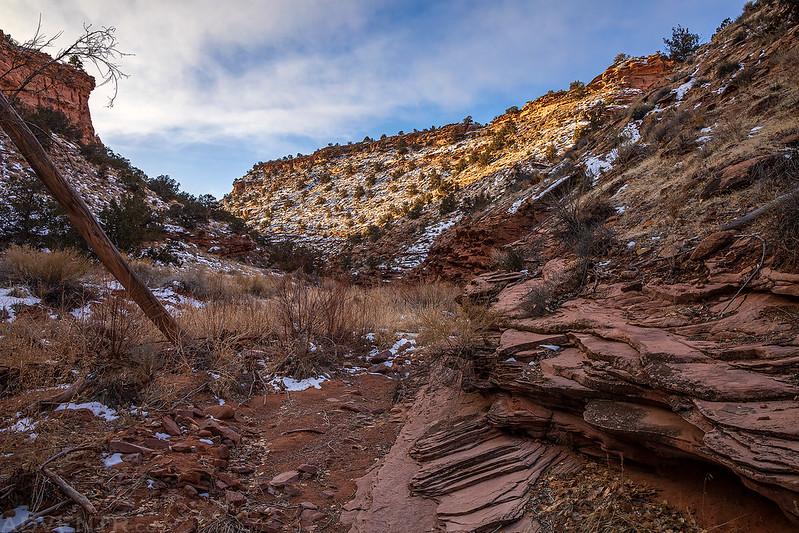 Lower Waring Canyon