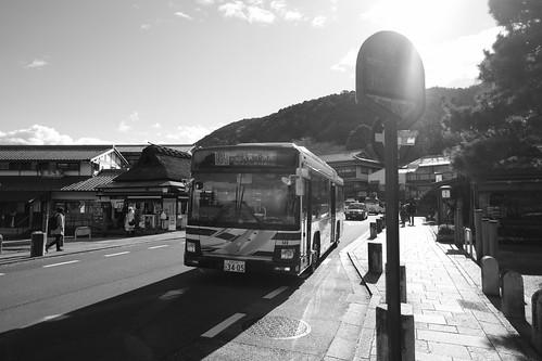 21-12-2020 (5th)(visiting 7Daikaku-ji Temple' from Arashiyama) (7)