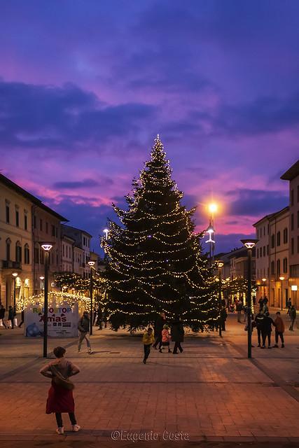 ...Buon Natale si spera -   ... Merry Christmas hopefully 🎅 M E R R Y C H R I S T M A S 🎅