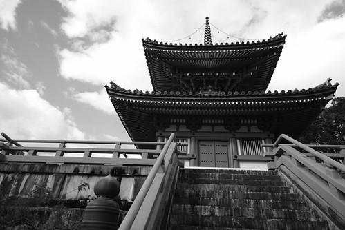 21-12-2020 (5th)(visiting 7Daikaku-ji Temple' from Arashiyama) (20)