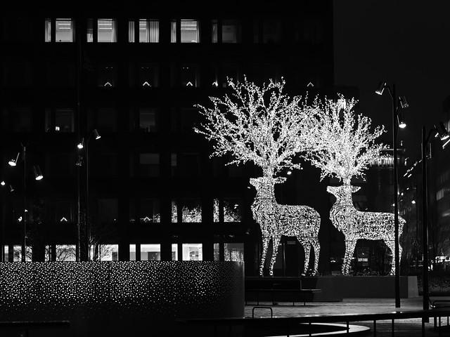 Glittering Reindeer