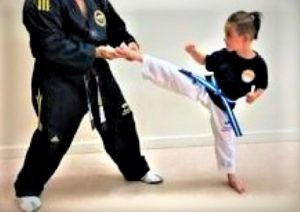 HOW TO CHOOSE THE RIGHT MARTIAL ARTS ACADEMY? | Pinnacle Martial Arts in Marrickville Inner West and Chester Hill in South West Sydney