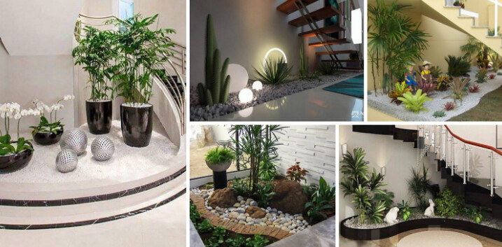 Small Garden Layout in the House in the Living Room or Corner