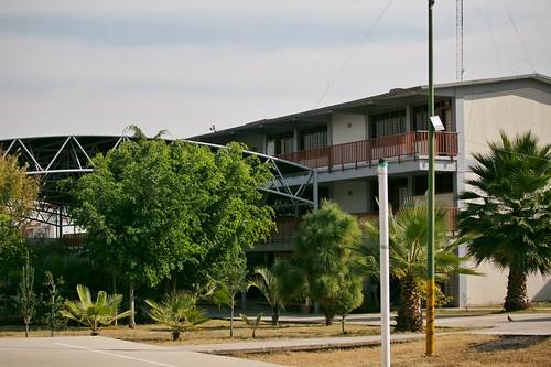 21 Dic 2020 . Secretaría de Educación . Reunión con Docentes del COBAEJ (Colegio de Bachilleres del Estado de Jalisco).