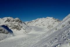 Ledovec Aletsch