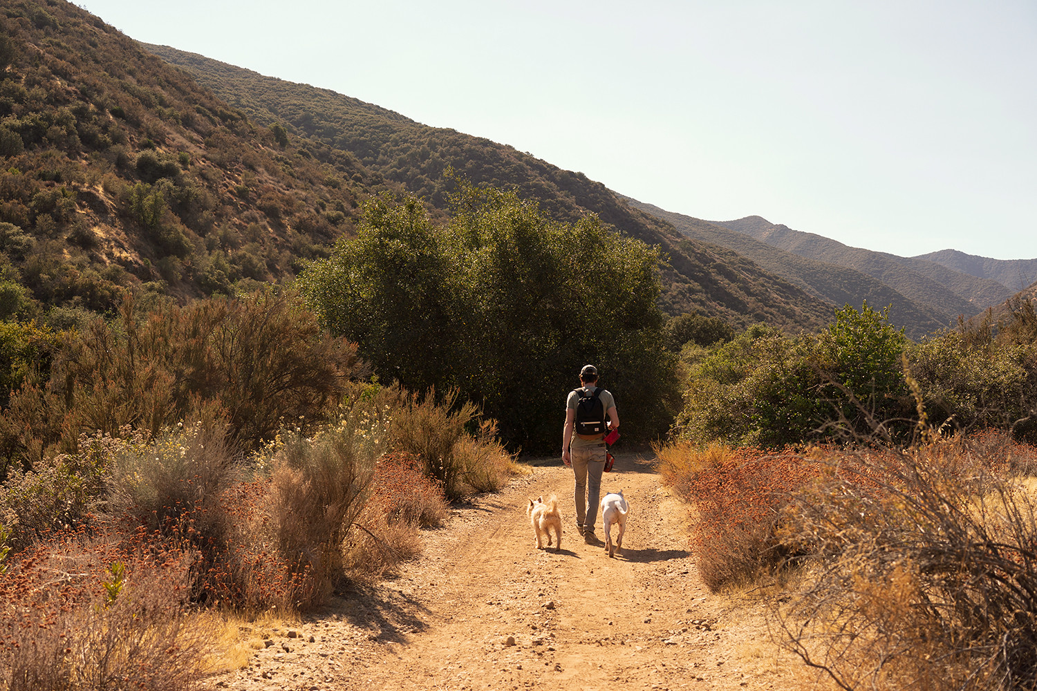 16newcuyama-alisocanyon-california-hike-travel