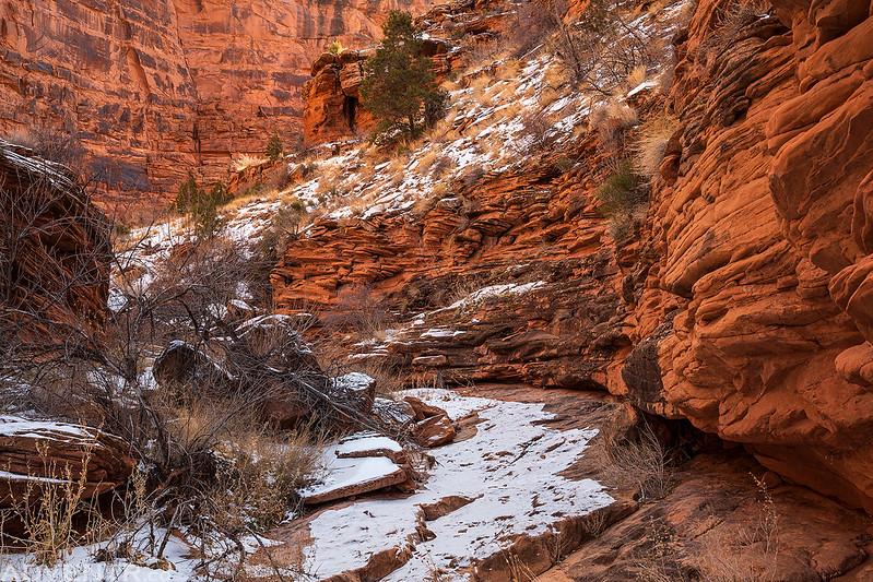 Pole Canyon Hike