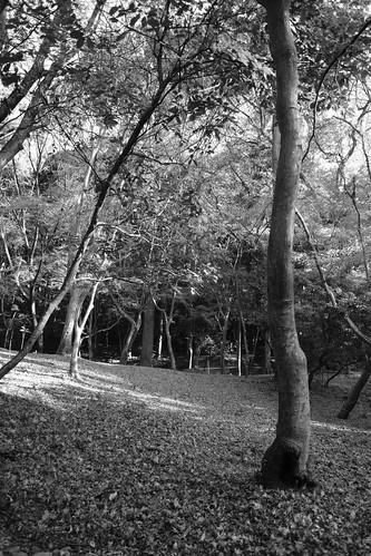 22-12-2020 Kyoto vol01a (68)