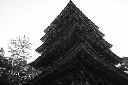 22-12-2020 Kyoto vol01a (56)