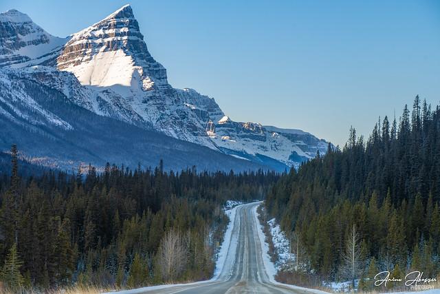 Mt Chephren Icefields Parkway Banff