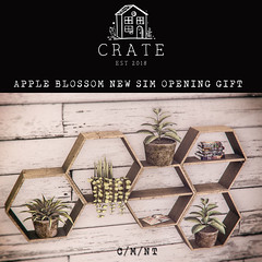 crate has a new shop on Apple BlossomSim