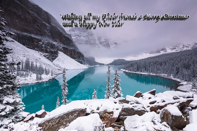 Thank you for your favs-comments this year D85_5044-Edit.jpg