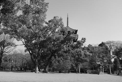 22-12-2020 Kyoto vol01b (11)