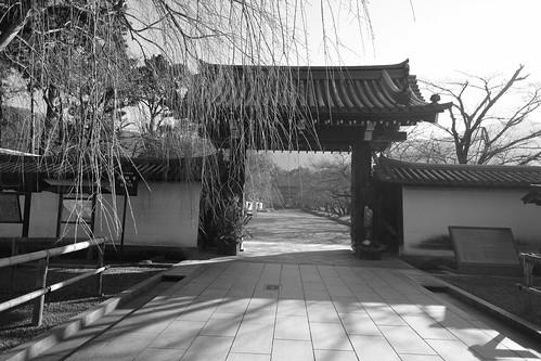 22-12-2020 Kyoto vol01a (28)
