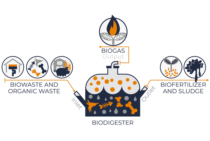 Biodigesters use microbes to speed the decay of organic matter (usually food waste) and use the resulting methane-rich biogas as a sustainable energy source for electricity, cooking, and heating. The Monte del Sol team built a biodigester in the school greenhouse.