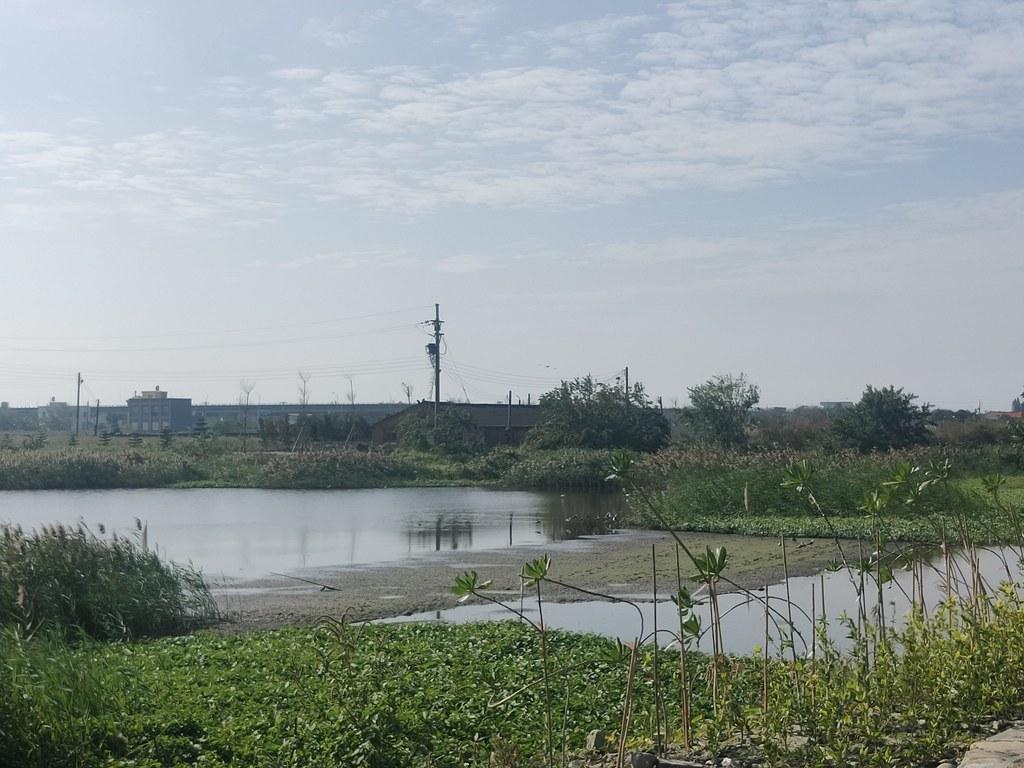 口湖鐵窗故事生活館 (6)