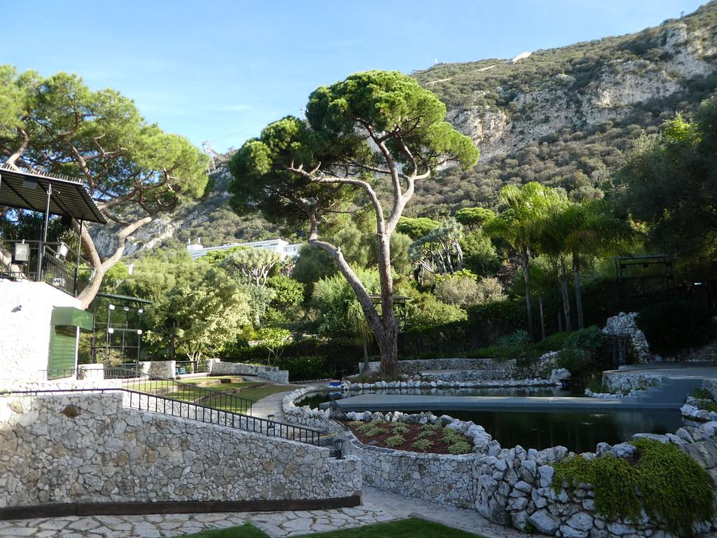 Ornamental lake, Alameda Botanical Gardens, Gibraltar