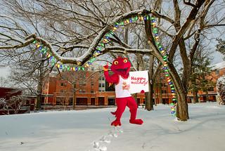 Eye on UMSL:  Happy Holidays!  Dec. 22, 2020