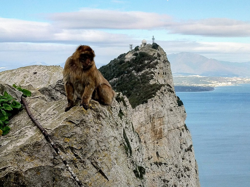 View from the Top of the Rock, GIbraltar
