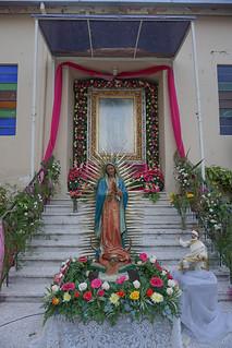 Guadalupe (70)