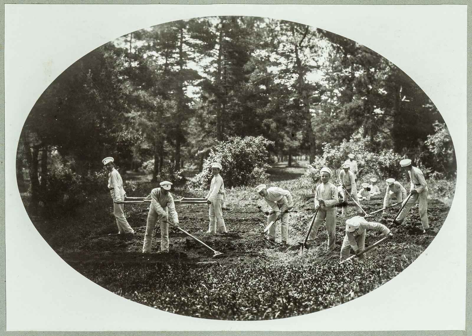 10. Кадеты на садовых работах в летнем лагере