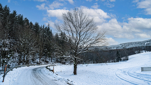 Winter landscape in the Semmering area