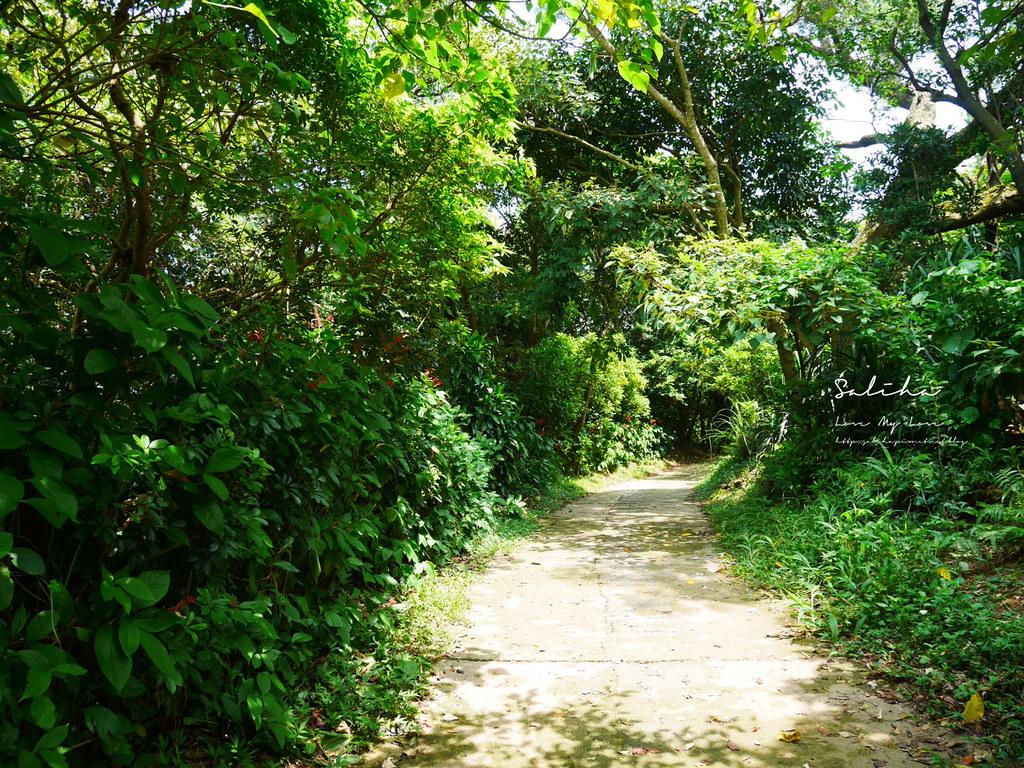 台北景觀登山步道劍潭站士林附近景點可看101好美步道攻略踏青爬山郊遊市區 (1)