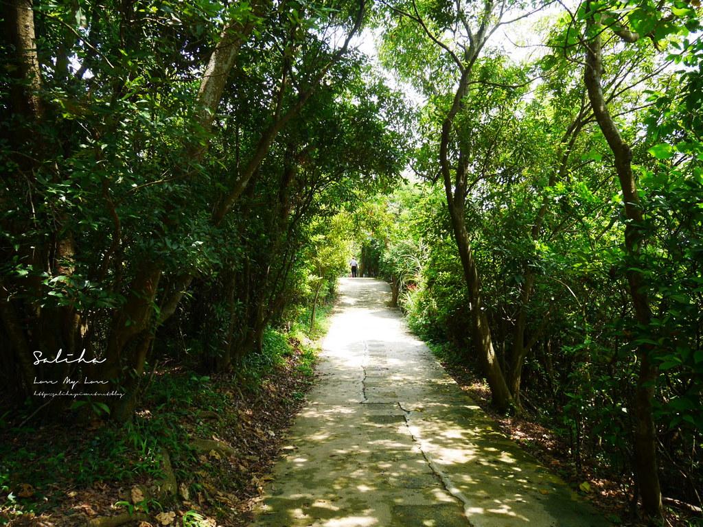 台北景觀登山步道劍潭站士林附近景點可看101好美步道攻略踏青爬山郊遊市區 (5)