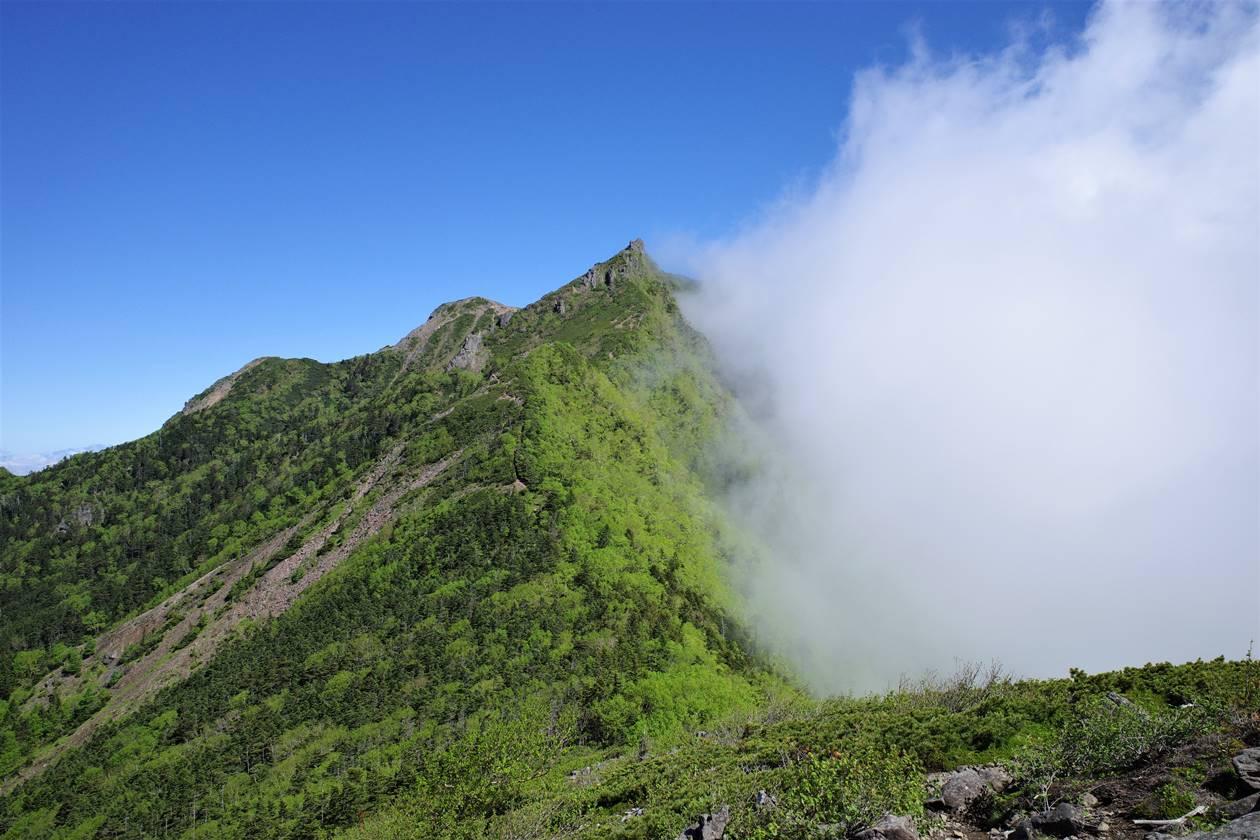 【八ヶ岳】三ッ頭から眺める権現岳