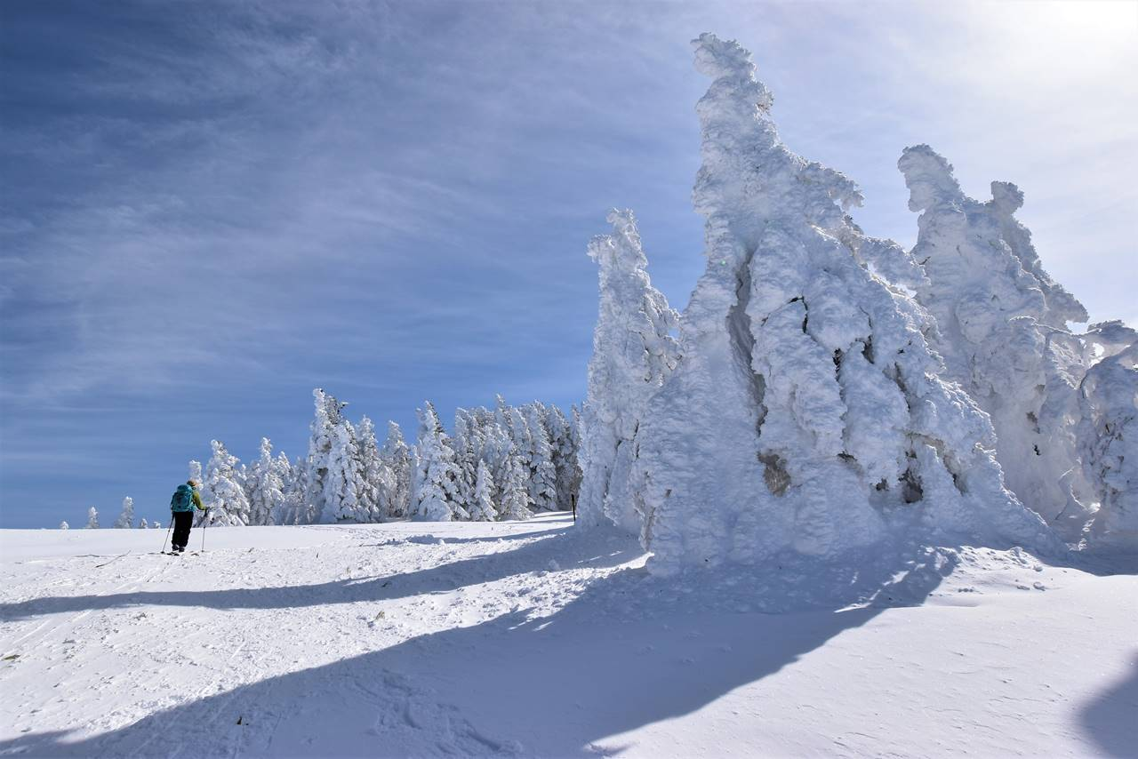 根子岳の樹氷・スノーモンスター 雪山登山