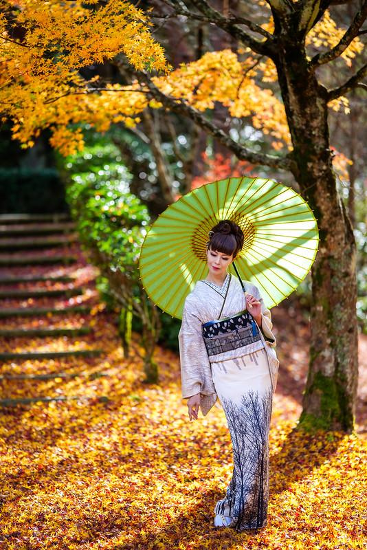 Autumn colors, portrait of beautiful women.