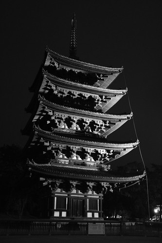 23-12-2020 Nara in evening (5)