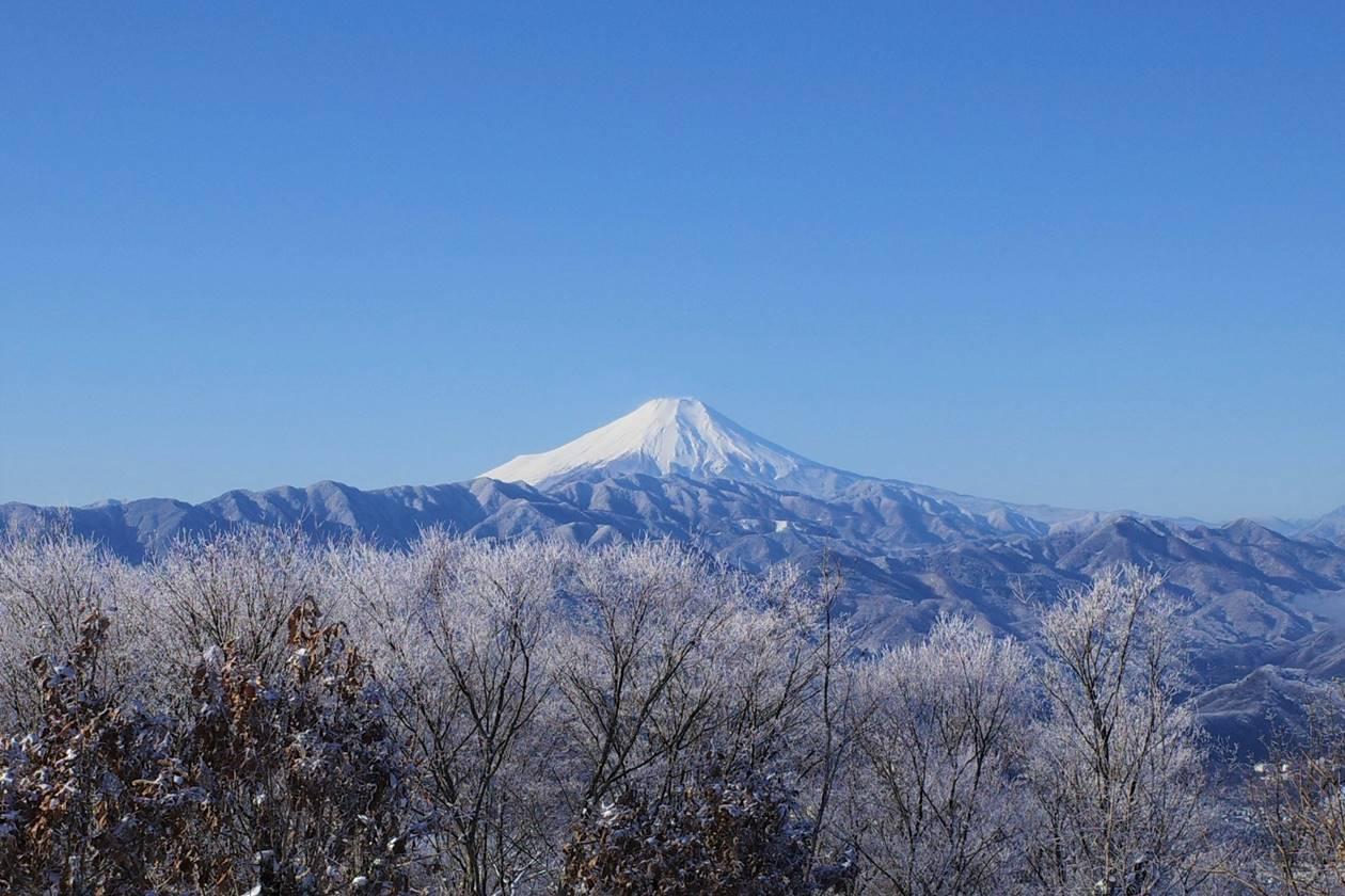 陣馬山から眺める霧氷越しの富士山