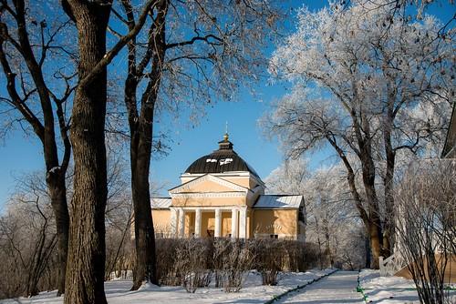 Фотодневник тарханской природы. 23 декабря 2020 г. Фотографии Сержантова А.