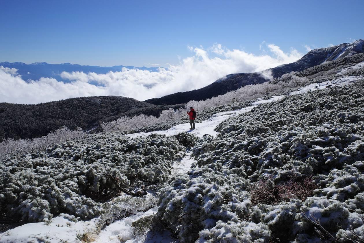 中央アルプス・将棊頭山登山 雲海と霧氷